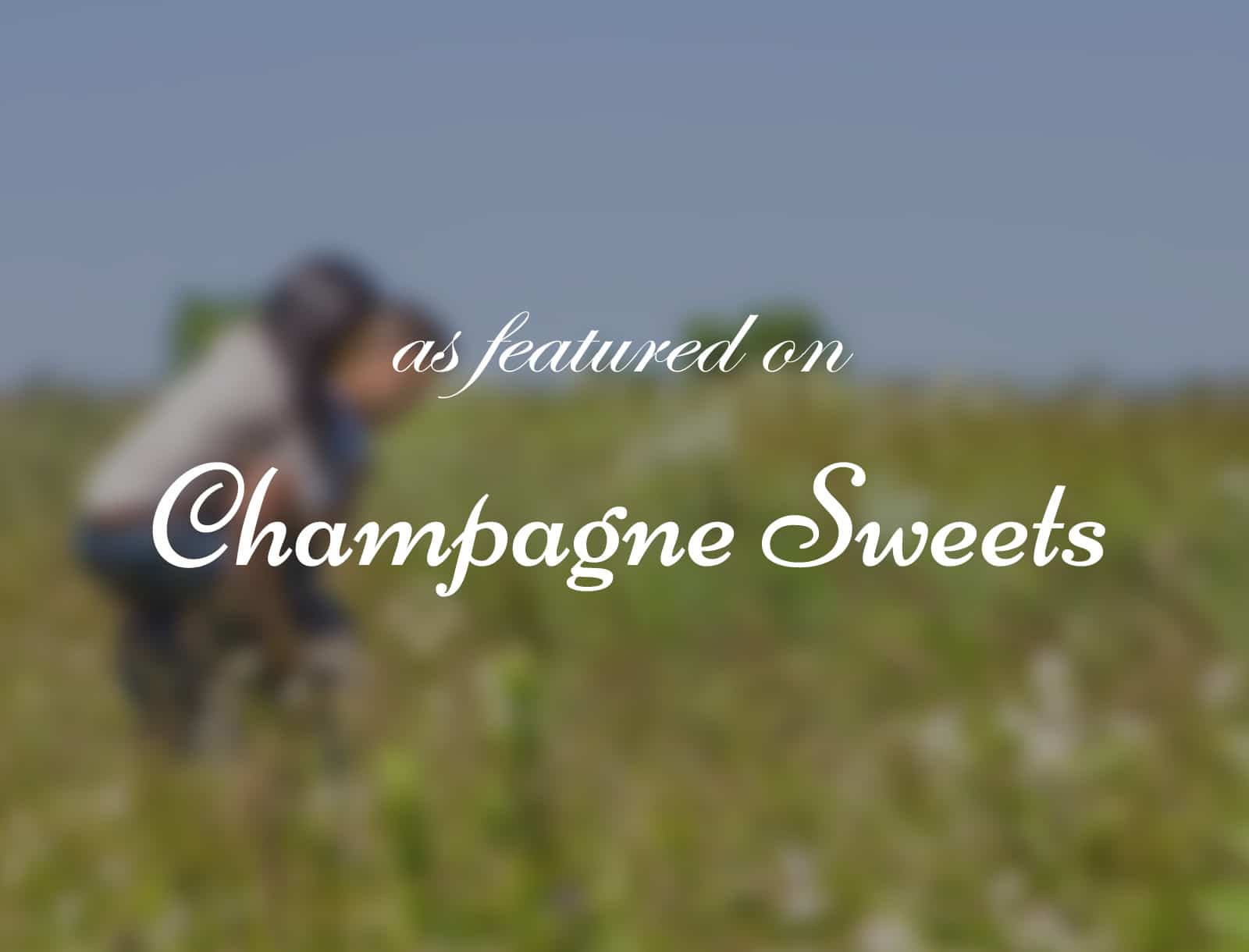 Published on Champagne Sweets: Craig & Leyna's Engagement Shoot