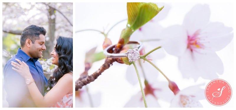 Toronto-High-Park-Cherry-Blossom-Engagement-Ring-Photos-1