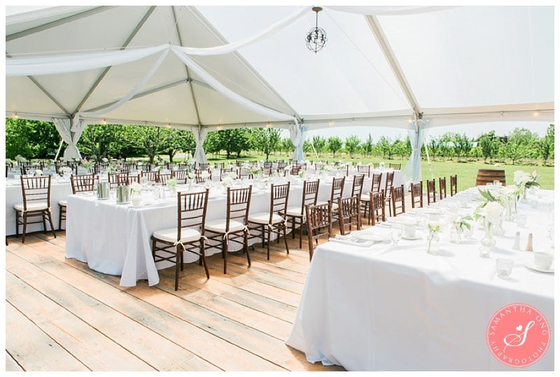 niagara kurtz orchards wedding photos kristina karl. Black Bedroom Furniture Sets. Home Design Ideas