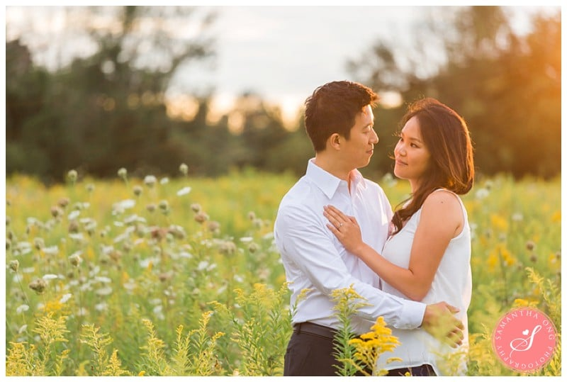 Pickering-Summer-Engagement-Photos-Fields-Flowers-Sunset-05