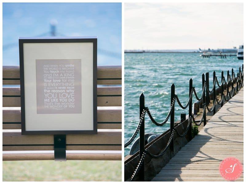 Toronto-Harbourfront-Proposal-Photos-Aqil-Aashna-01
