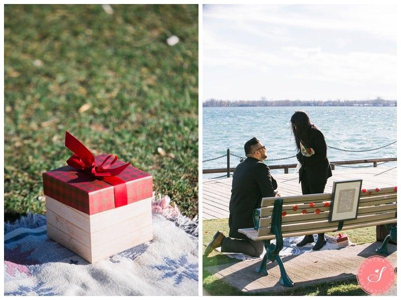 Toronto-Harbourfront-Proposal-Photos-Aqil-Aashna-07