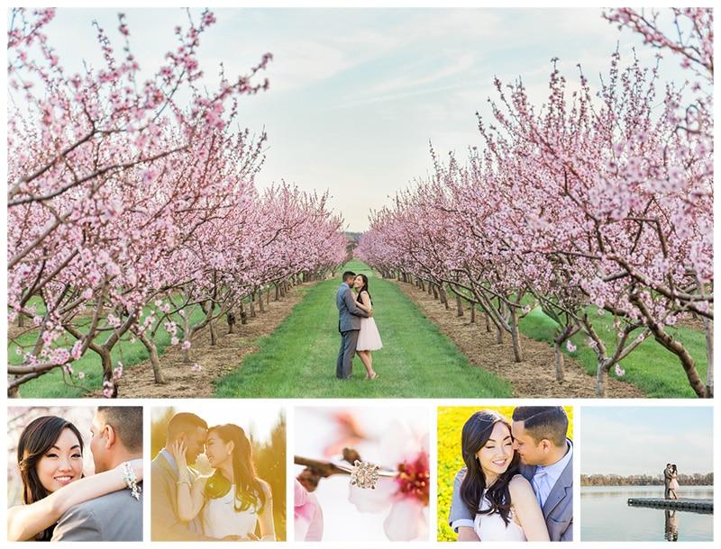 Niagara Cherry Blossom Spring Engagement Photos: Josie + Chris