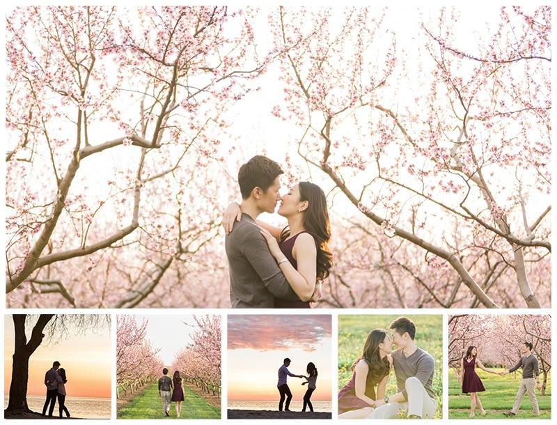 Niagara Spring Cherry Blossom Engagement Photos: Liz & Jin