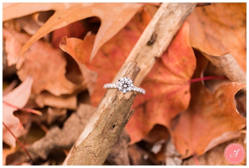 toronto-edward-gardens-fall-engagement-photos-13