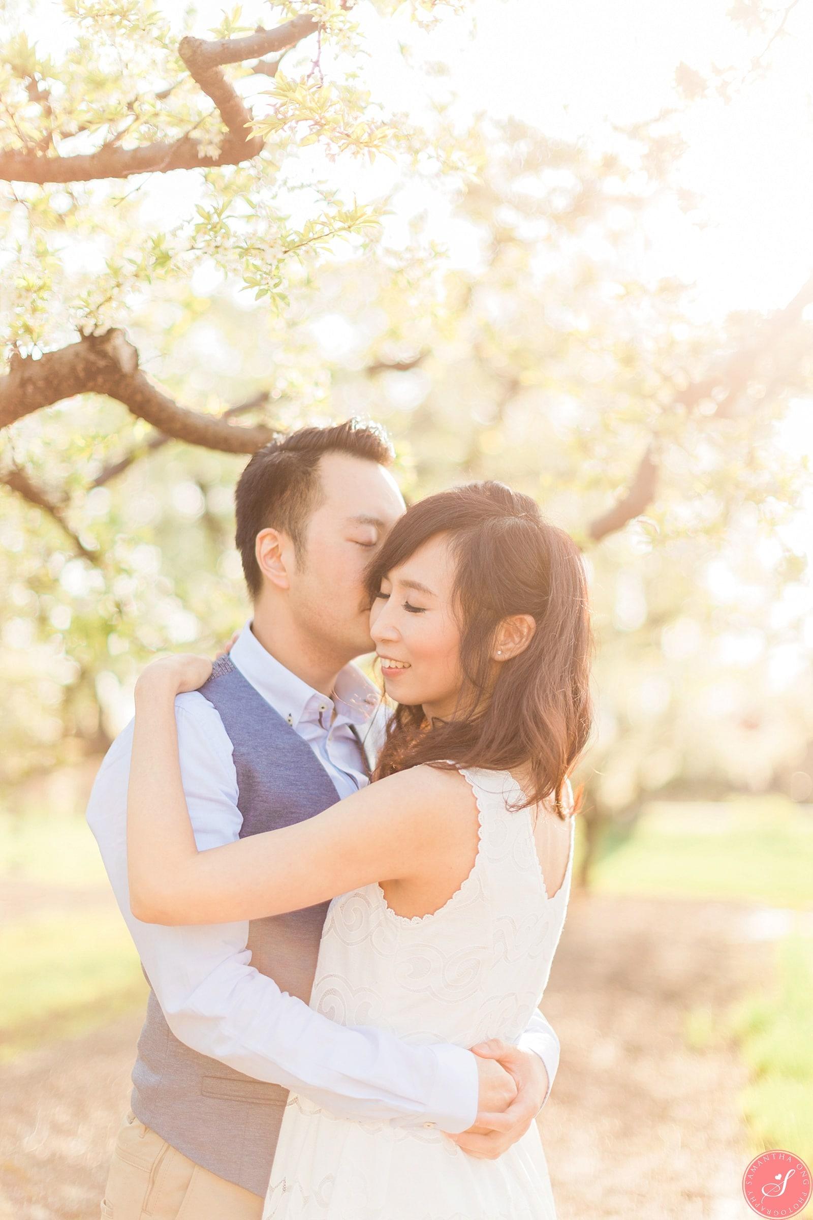 Niagara Spring Blossom Engagement Photos