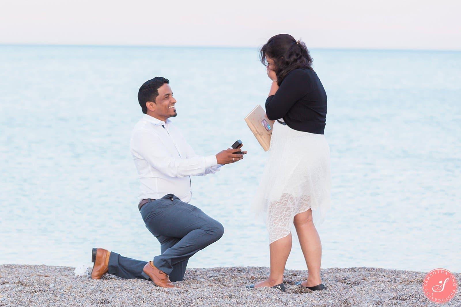 Toronto Surprise Proposal