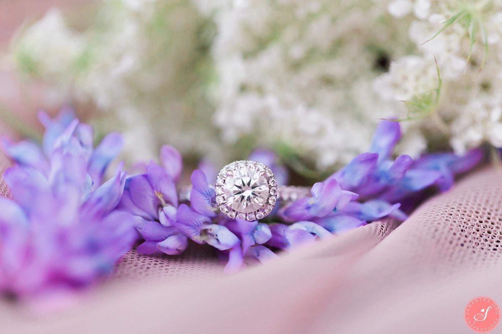Pickering Engagement Photos