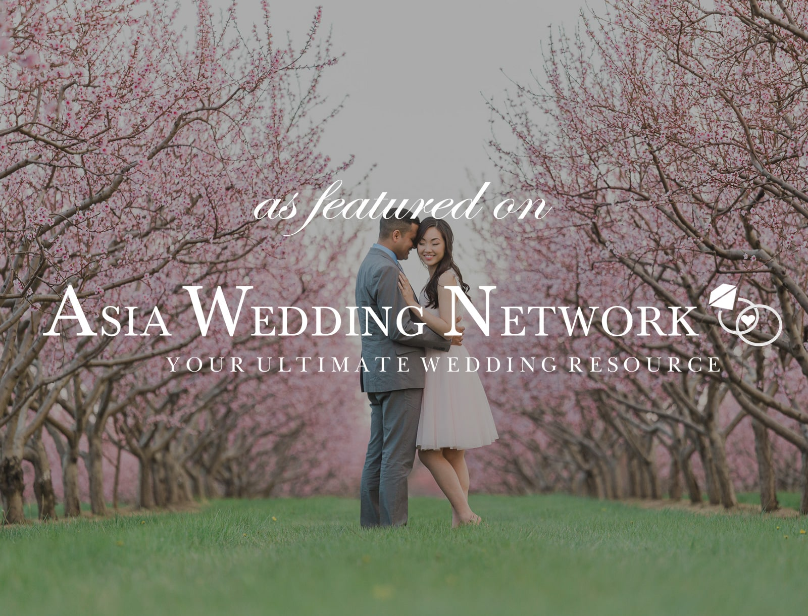 Featured on Asia Wedding Network: Planning a Cherry Blossom Photoshoot
