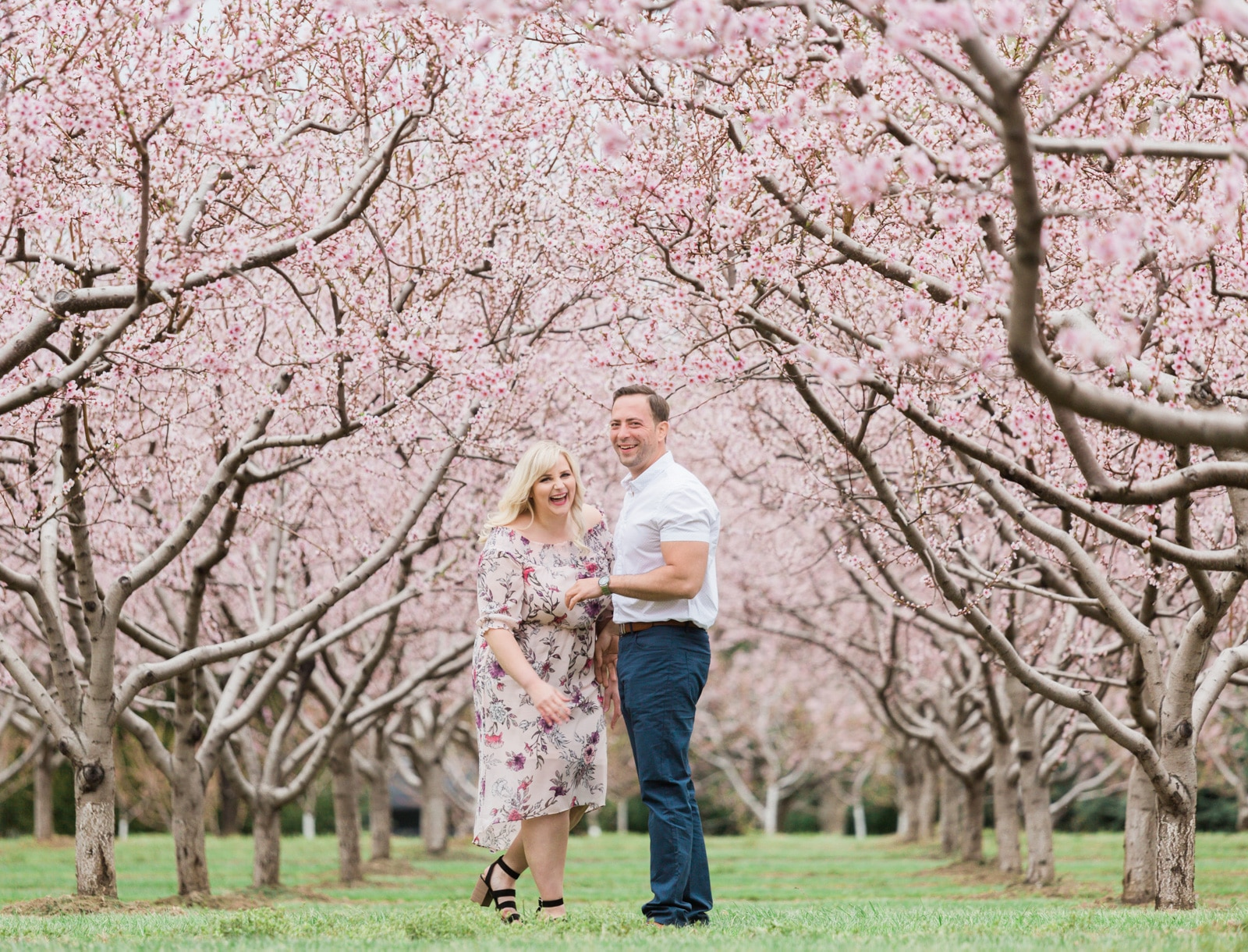 Cherry Blossom Engagement in Niagara: Cassandra + Joe
