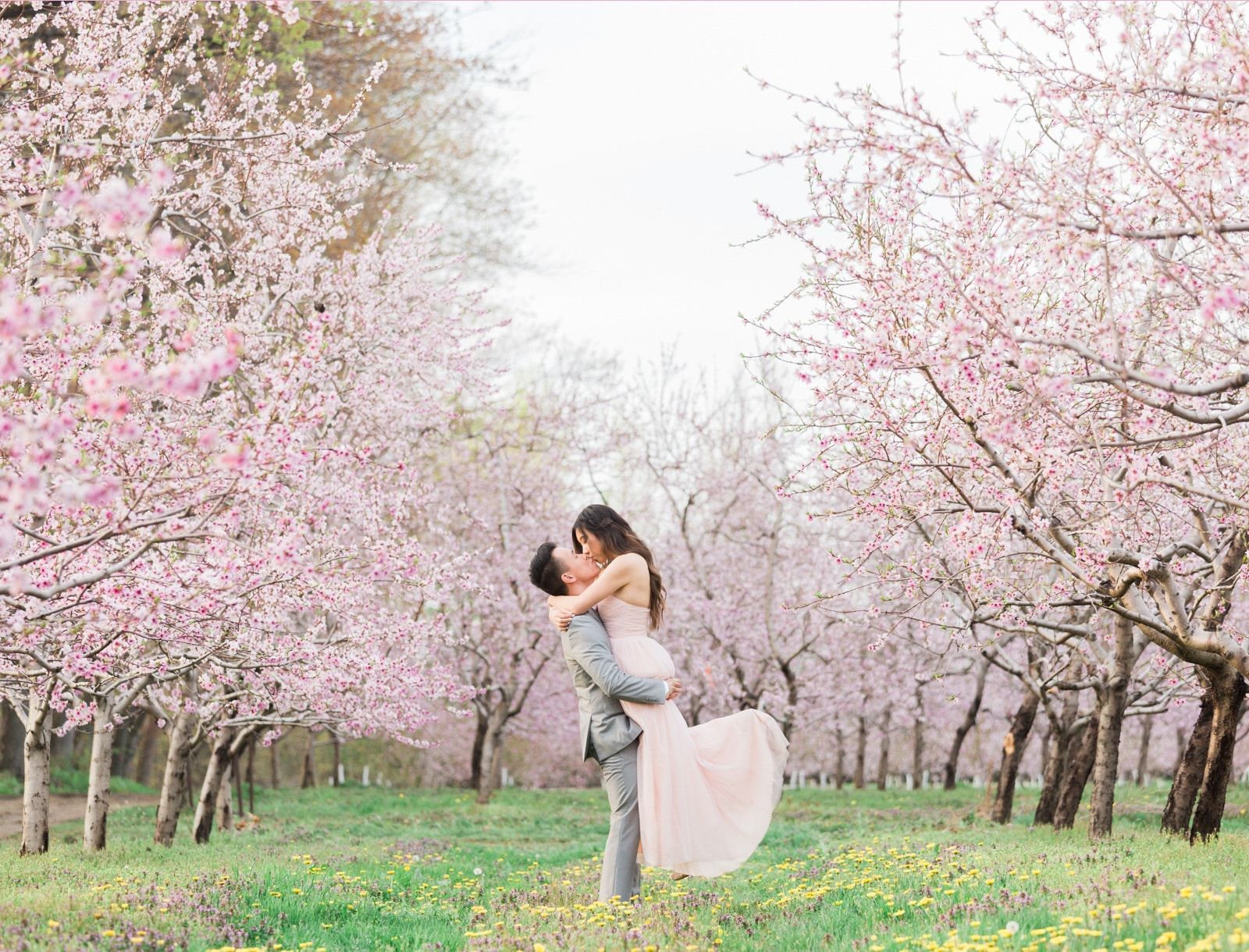 Niagara Cherry Blossom Engagement Session: Natalie + Jacky