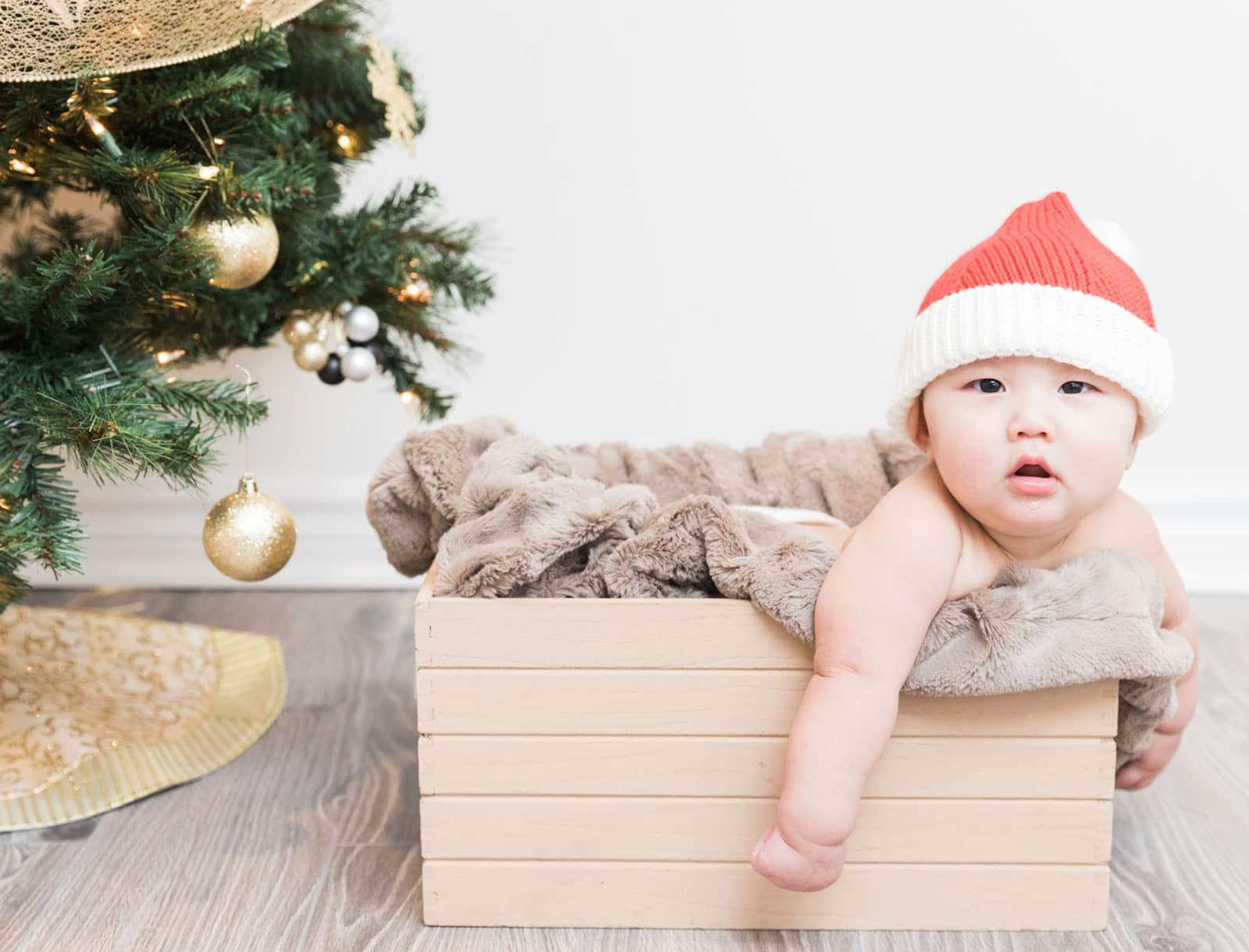 Toronto Christmas Baby Photographer