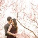 Niagara-Cherry-Blossom-Romantic-Engagement-Photos-4