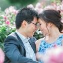 Rose-Garden-Mornington-Melbourne-Prewedding-Photos-1